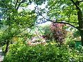 Tier und Freizeitpark Thüle - panoramio (2).jpg