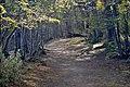 Tierra del Fuego - panoramio.jpg