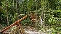 Timber (33428732011).jpg