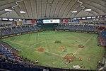 Tokyo Dome 2015-5-12.JPG