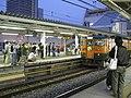 Toritetsu at Ageo Station 20091101 1.jpg