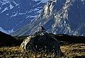 Torres del Paine, Los Cuernos 11.jpg