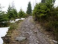Trail near Sonnenkappe 18.jpg