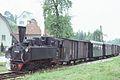 Trains du Steyertalbahn 12.jpg