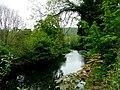 Tranquil Torridge 2 - geograph.org.uk - 1301798.jpg