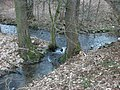 Treuen, Mündung des Lämmelsbachs in die Treba.jpg