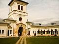 Turnul portii manastirea delaul.jpg
