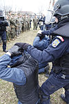 U.S. & Romanian Forces Conduct Bilateral Training 150225-M-XZ244-397.jpg