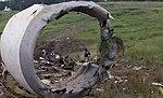 UPS Flight 1354 investigation (9544585419).jpg