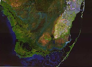 Draining and development of the Everglades - Satellite image of the southern Everglades with developed areas in 2001, including Everglades National Park, the Big Cypress Swamp, Florida Bay and the southern tip of the South Florida metropolitan area   Source: U.S. Geological Survey
