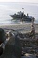 USMC-100224-M-6323R-015.jpg
