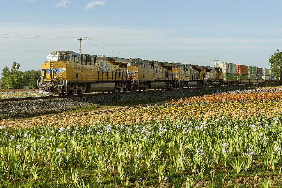 Union Pacific train (26862149220)