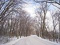 University of Wisconsin - Madison Arboretum.jpg