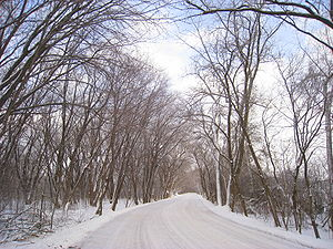 University of Wisconsin–Madison Arboretum - Winter view