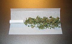 La drogue et les corps... dans HUMANITE 240px-Unrolled_joint