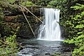 Upper North Falls, Waterfalls, Oregon (31898943063).jpg
