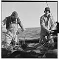 Vårfiske på Vardø - L0049 770Fo30141609280053.jpg