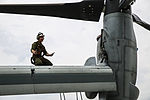 VMM-365 (Rein) works hard to stay mission ready 140923-M-QZ288-051.jpg