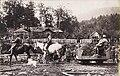 Valea Casinului 1917.jpg