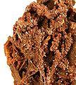 Vanadinite-Wulfenite-184601.jpg