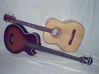 Acoustic bass guitar Type of acoustic instrument