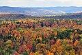 Vermont fall foliage hogback mountain.JPG