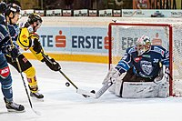Vienna Capitals vs Fehervar AV19 -200-8.jpg