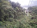 View from the Cable Car at Genting Highlands, Malaysia (13).jpg