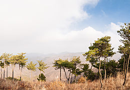 View from top of Dongdaesan, Ulsan.jpg