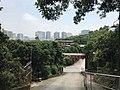 View near Xili Lake Station 5.jpg