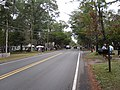 View of Main Street in Cameron, North Carolina, during the October 2019 Antiques Fair.jpg