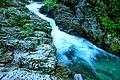 Vintgar Gorge (34971840944).jpg