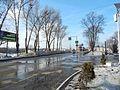 Volodarskiy rayon, Bryansk, Bryanskaya oblast', Russia - panoramio (18).jpg