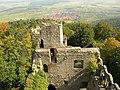 Vue du château du Bernstein (523 m) (Dambach-la-Ville).jpg