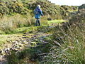 Walking on the moor up a wet track - geograph.org.uk - 1473643.jpg