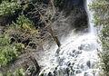Waterfall, Canyon Kapıkaya 12.jpg