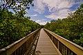 Weedon Island preserve - panoramio.jpg