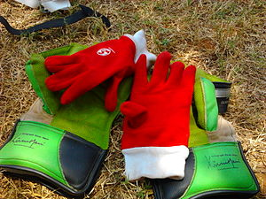 Wicket-keeper - Wicket keeping gloves along with the inner gloves