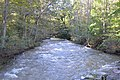 Wills Creek at Philson.jpg