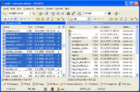 Screenshot WinSCP