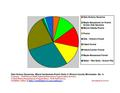 Winona County Pie Chart Wiki Version.pdf