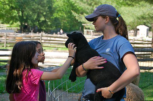 Woman child petting goat dog brush