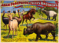 Wondrous Wild Beasts, poster for Forepaugh & Sells Brothers, 1896.jpg