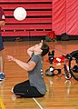 Wounded Warrior Regiment conducts sitting volleyball camp for Warrior Care Month 141118-M-XU385-955.jpg
