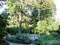 Zabytkowy zespół klasztorny urszulanek w Tarnowie, ogród i dziedziniec klasztorny, ul. Bema (-) 7 pavw.JPG