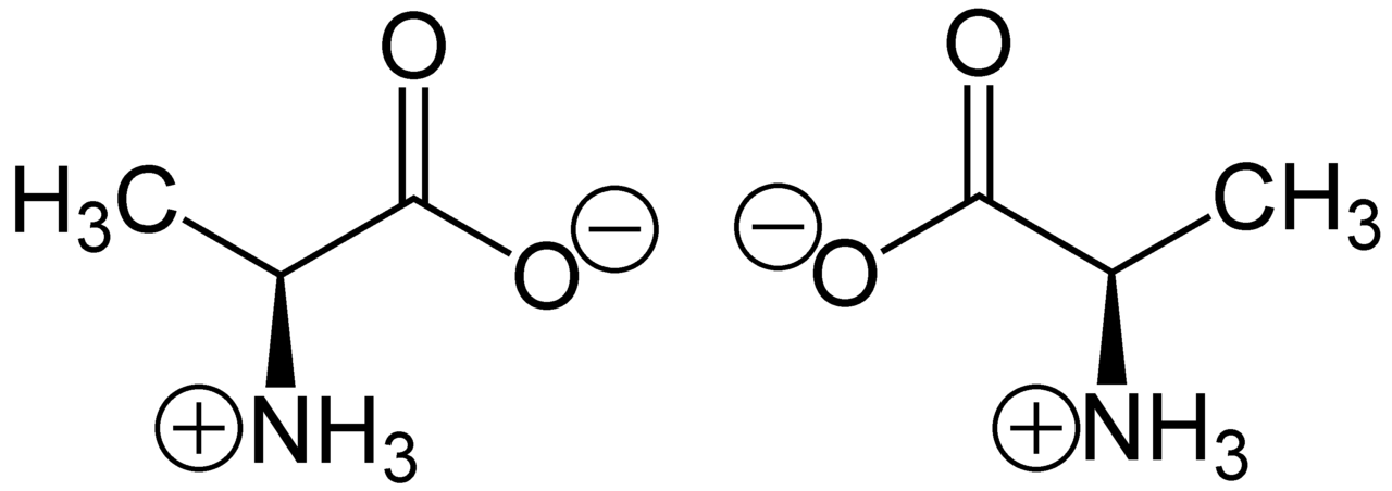 File:Zwitterion-Alanine.png - Wikimedia Commons