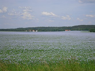 Östergötland - Typical Östgöta plains