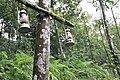 Đèn bên đường lên đỉnh Sapa - panoramio.jpg