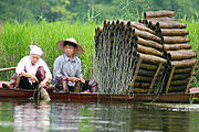 Fishermen with traditional fish traps, Hà Tây, Vietnam