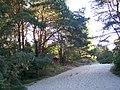 Świnoujście Strandweg - panoramio.jpg